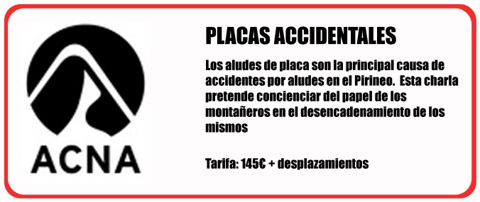 placas-accidentales